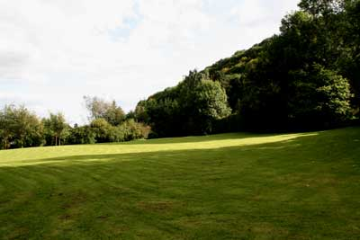 big lawn in the sunshine