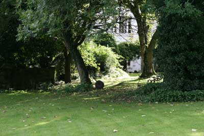 old garden roller