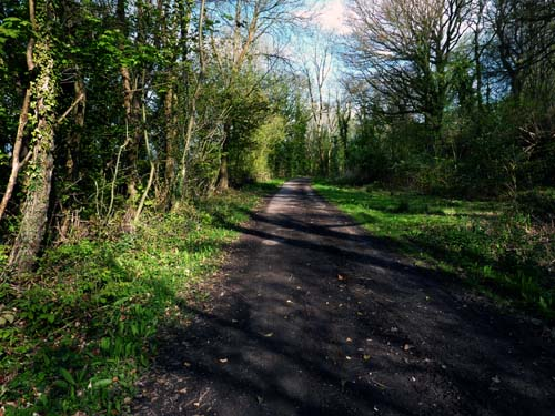 Countryside walks along old railway line with stunning views